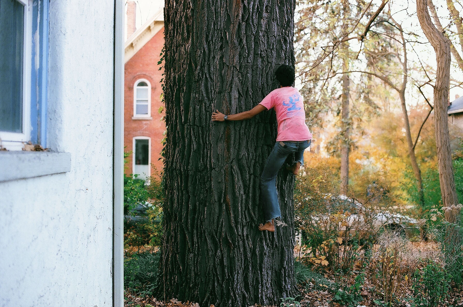 zachclimbingtree2